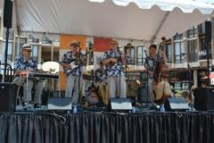 Lake Anne Roots Music Festival